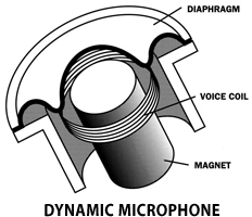 Choosing the Right Mic to Record Your Guitar Amp mic diaphragm